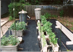 AquaNutrient Garden